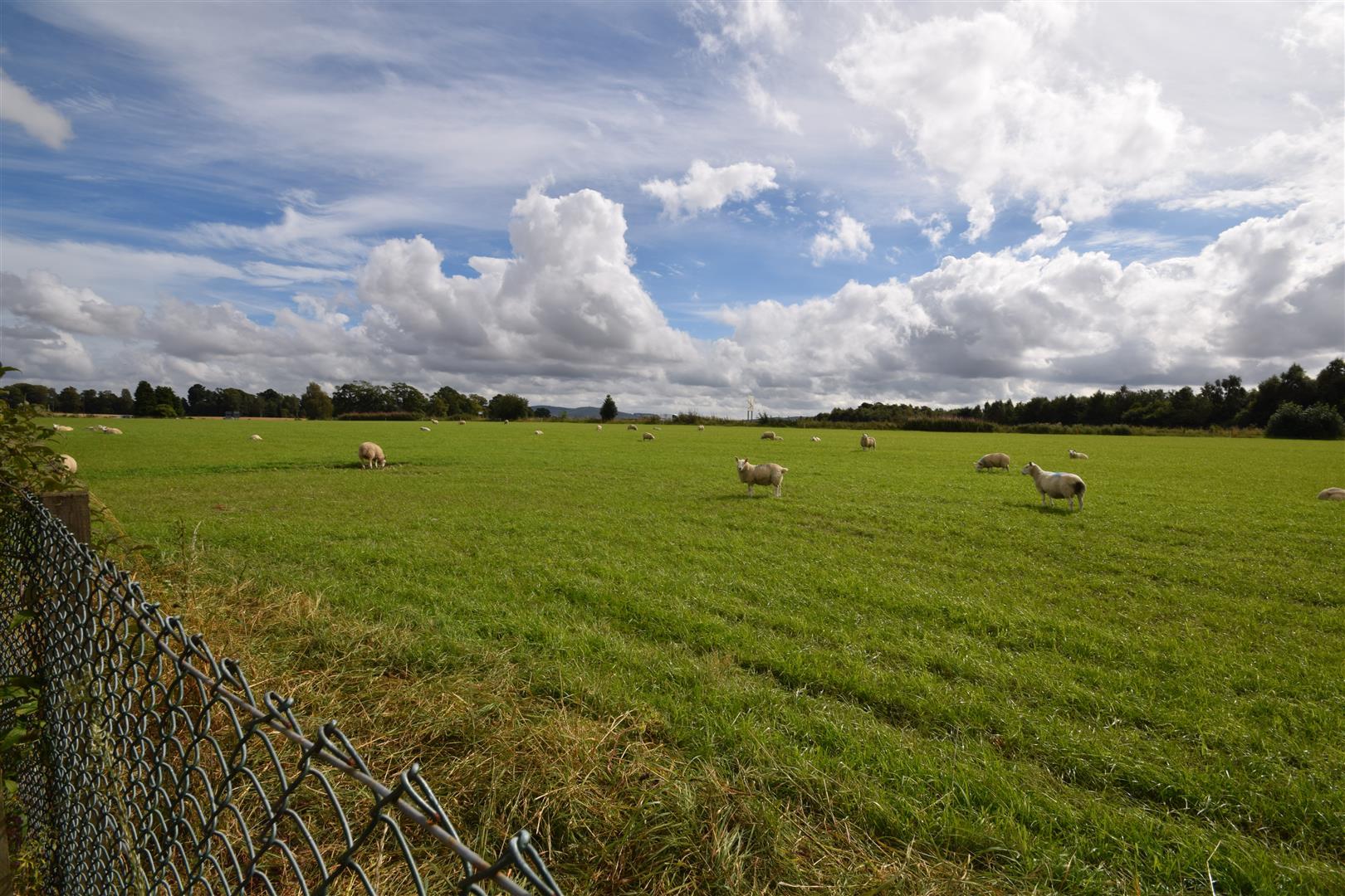 Roseangle, Meigle Road, Alyth, Alyth Blairgowrie, Perthshire, PH11 8EX, UK